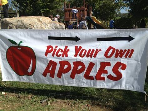 Best Apple Picking Places Near Me - Apple Orchard Events