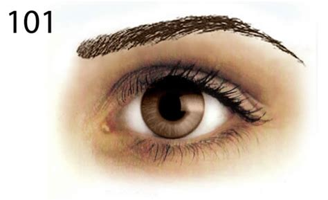 iBrowsers - Dark Removable Tattoo Eyebrow Styles