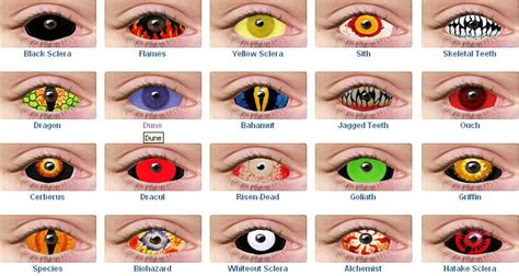 Contact Lens- Forwarders