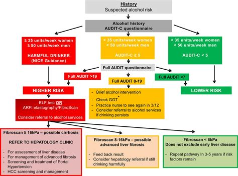 Guidelines on the management of abnormal liver blood tests